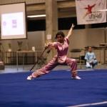 Open Flanders Wushu Cup 2013 - Xin Mei met Jianshu