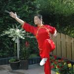 Shifu Zheng
