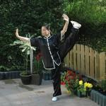 Shifu Zheng - Tai Chi
